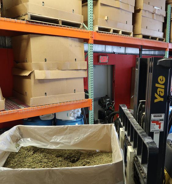 Large Scale Hemp Processing Equipment